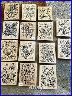 Large Lot PSX Botanical Rubber Stamps Hollyhock, Narcissus, Azalea, Wisteria & Mor